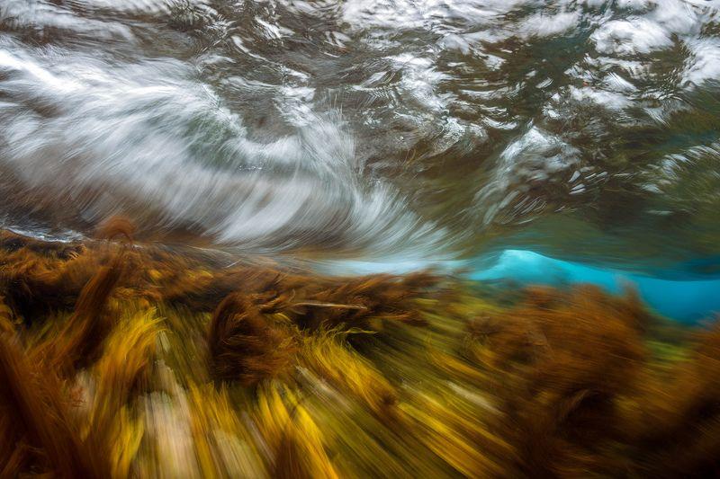 Монерон, подводное фото, underwater Осенний штормphoto preview