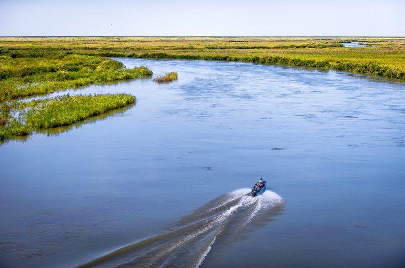 grigoriy bedenko, григорий беденко, дельта, или, казахстан, река, туранга, туранский тополь Осень в дельте реки Илиphoto preview