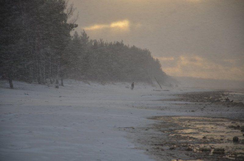 Ветер с моря дул (2)photo preview
