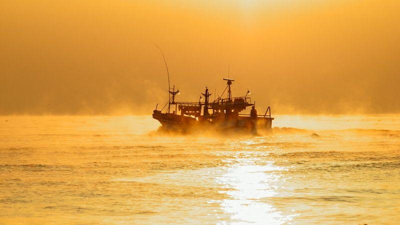 asia,korea,ulsan,sea,seascape,sunrise,fishing boat,fog,light,sunlight,new year,horizontal,waves,reflection, First day of 2017photo preview