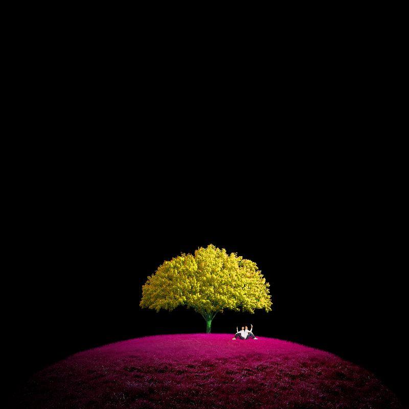 树下 摄影师photo preview