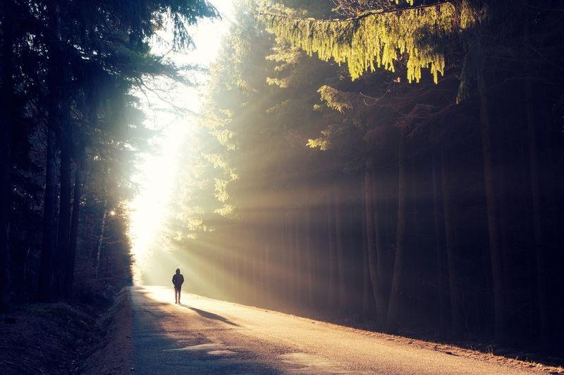 sunrise,sunlight,morning,way,journey,road,autumn,fall,one,lonely,alone,man,boy,guy,silhouette,fog,mist, Magic sunrisephoto preview