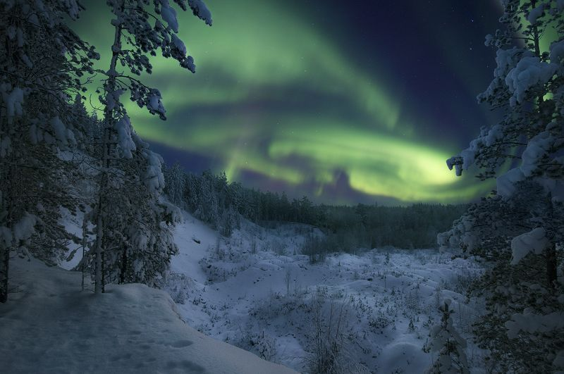Северное Сияние, Aurora borealis, Кольский полуостров как-то ночьюphoto preview