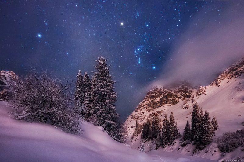 туюк-су, ночь, горы, ночное небо, орион Ночь на Туюк-Суphoto preview