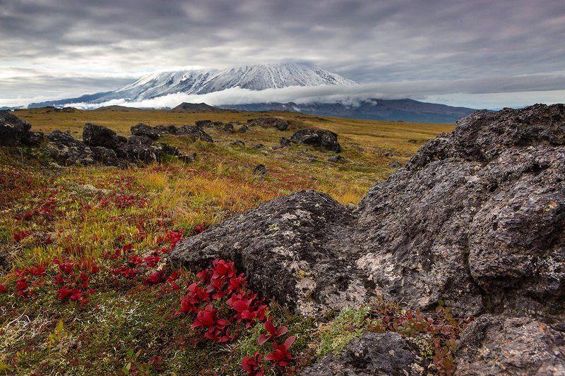 Камчатка, природа Осенняя Камчаткаphoto preview