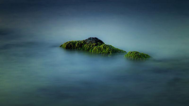 вода камни водоросли природа море лето Лохматый островphoto preview