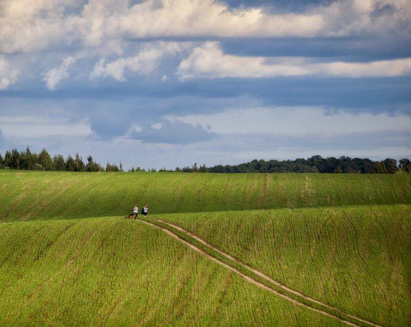 Однажды в поле...photo preview
