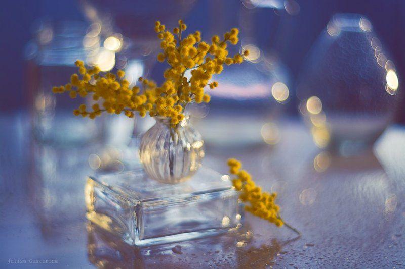 аромат весныphoto preview