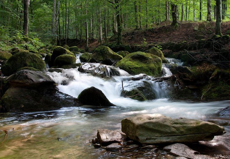 река, горы, лес, карпаты Шум горной рекиphoto preview