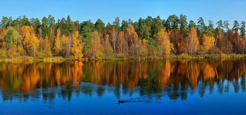 осень, речка, пехорка, лосиный, остров, панорама Осень в Лосином острове, р.Пехорка 2009photo preview