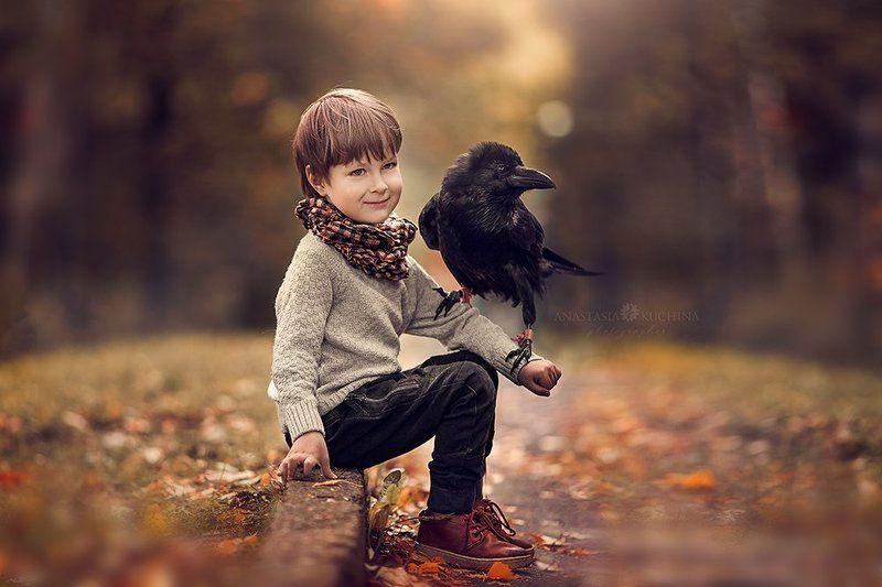 Мальчик, ребёнок, осень, ворон Мальчик и его воронphoto preview
