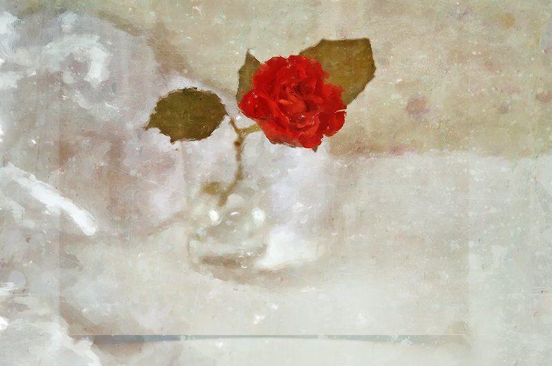 аромат розы...photo preview