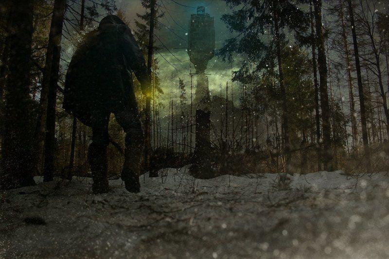 лес К той самой Башне...photo preview