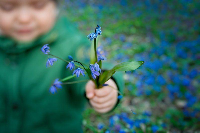 дети, весна Подснежникиphoto preview