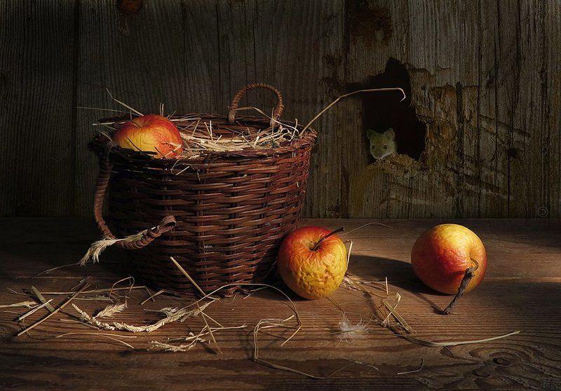 корзина,яблоки,мышка Про мышку или ( С 1-м апреля!)photo preview
