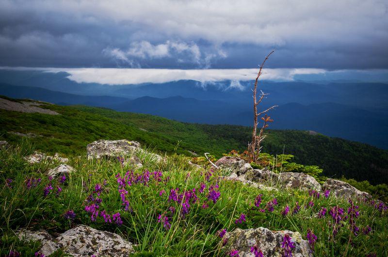 Горы, Приморье, Приморский край Границы мировphoto preview