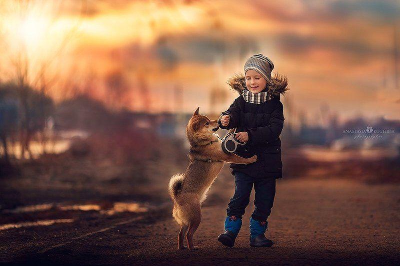 мальчик, собака, весна, шиба Первый день весныphoto preview