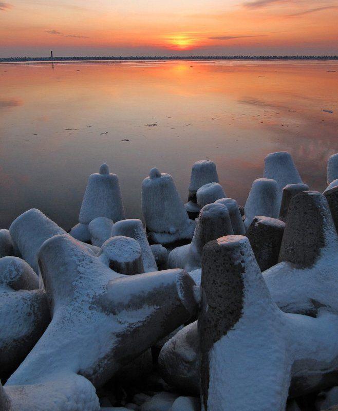 закат, Балтийск, тетраподы Секта свидетелей заката.photo preview