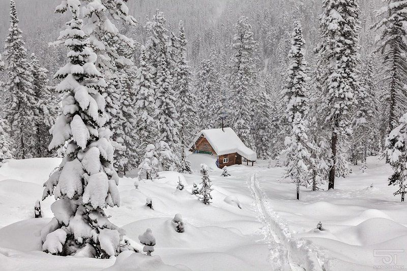 Зимняя сказка Хамар-Дабанаphoto preview