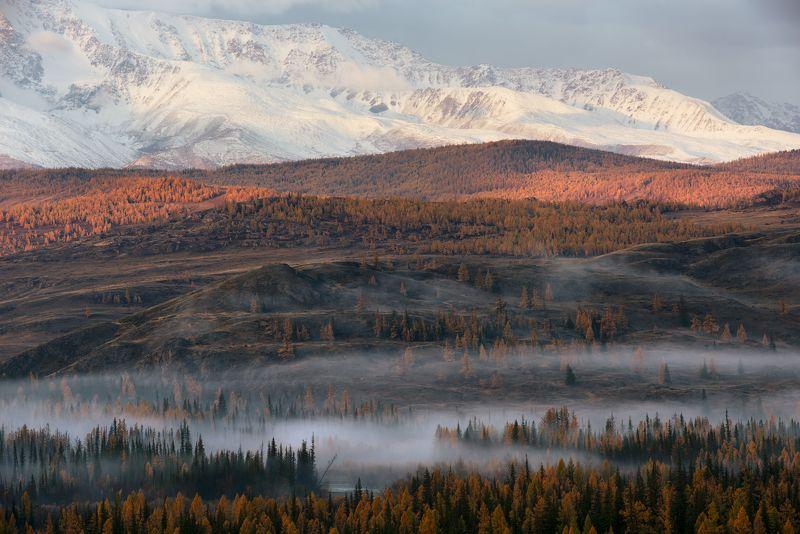 утренний туман в Курайской степи photo preview