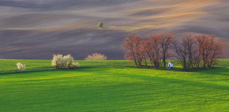 moravia, spring, april а где-то весна..photo preview