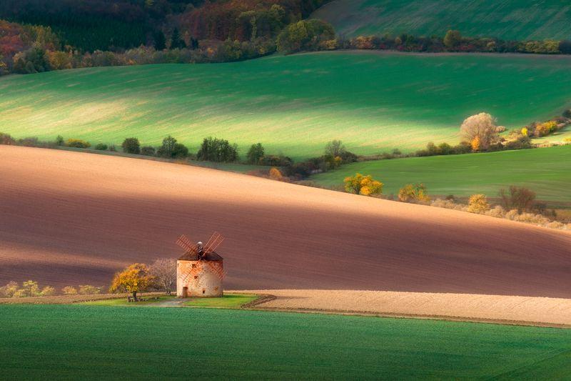 мельница, поля, моравия, осень, холмы, волны Прикосновения солнцаphoto preview