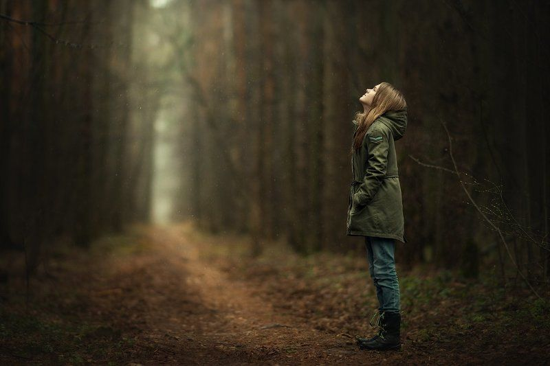 в таинственном лесуphoto preview