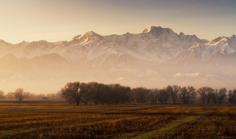 пик талгар, заилийский алатау, рассвет, горы Пик Талгарphoto preview