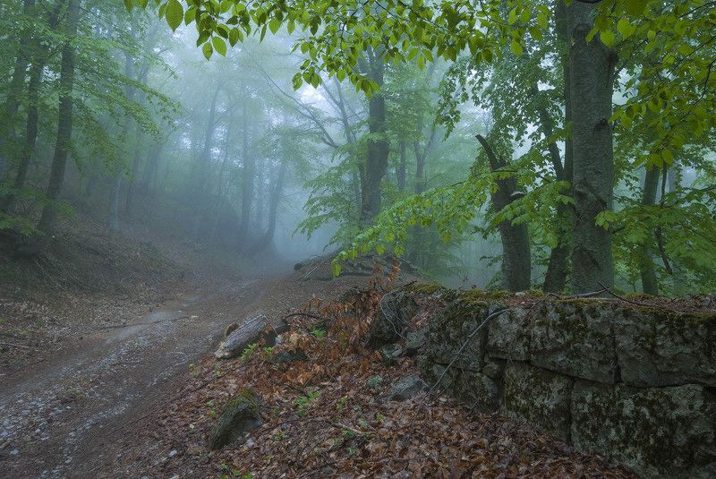 Старые стены Романовской дороги.photo preview