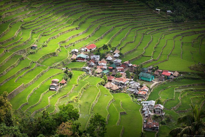 Rice Terracesphoto preview