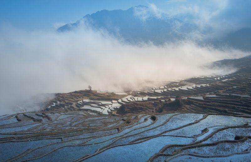 китай рис рисовые террасы туман горы Туманные террасыphoto preview