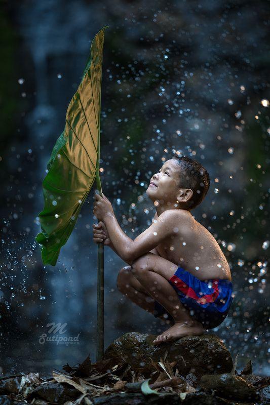 child,kid,hope,happiness,boy, Cheerfulphoto preview