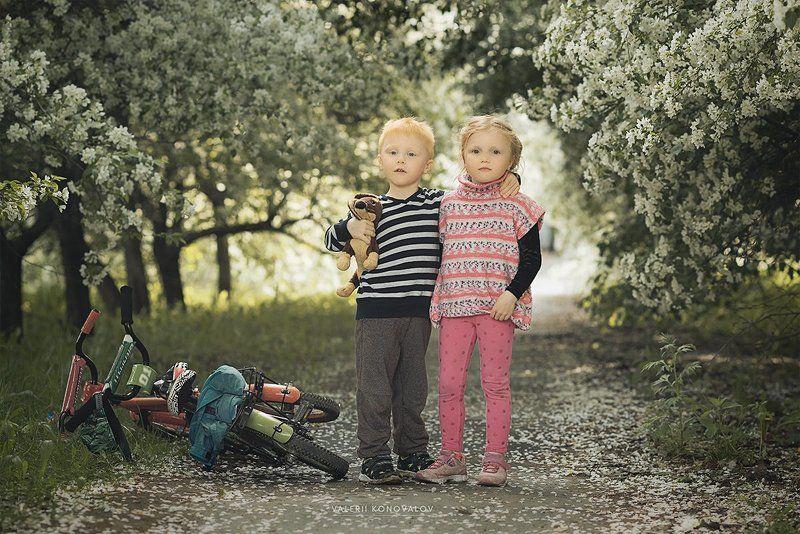 семья, дети, любовь Лето в яблонях...photo preview