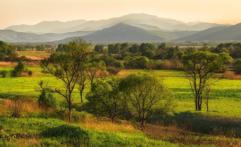 приморский край, закат, горы, поле зелёный райphoto preview