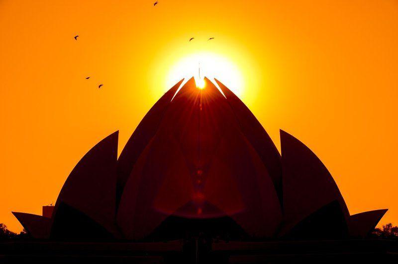 индия, дели, нью-дели, lotus temple, бахаизм, бахаи, Lotus Templephoto preview