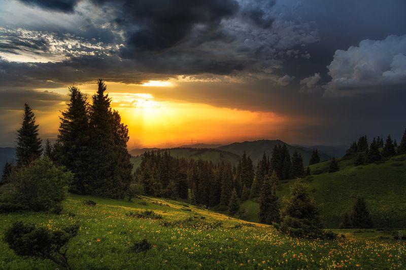 горы, казахстан, алматы, закат Горы Алматыphoto preview
