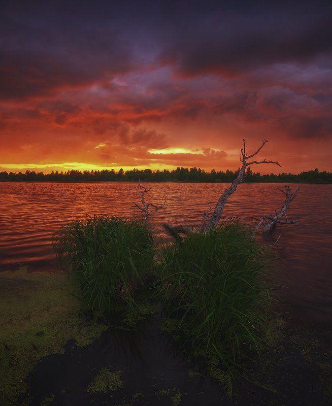 россия, подмосковье, весна, вечер, закат, небо, краски, свет, цвет, огонь, вода, озеро, тучи, облака, трава Инферноphoto preview