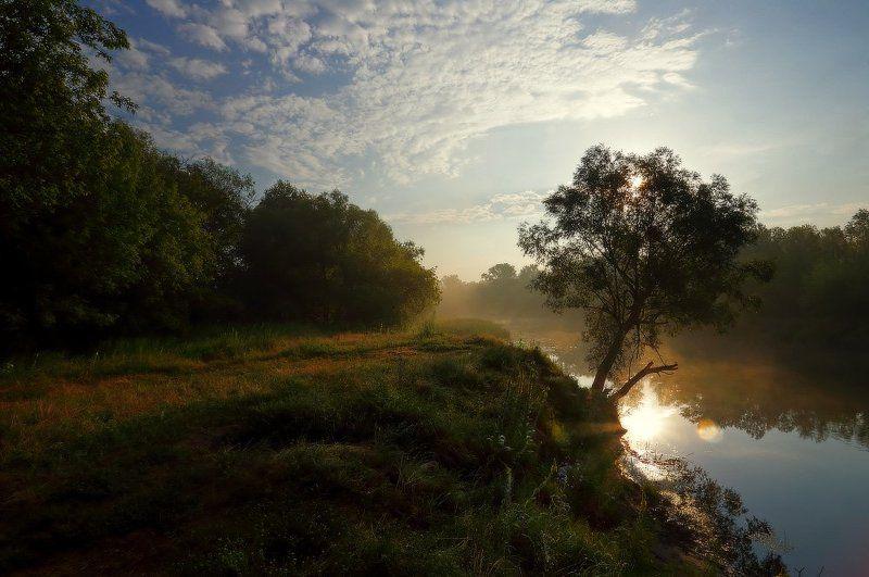 река донец лето утро туман изюм Утро после дождливого дня.photo preview