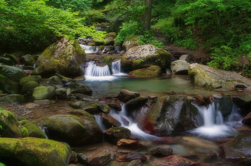 лето река перекаты Горная речка.photo preview