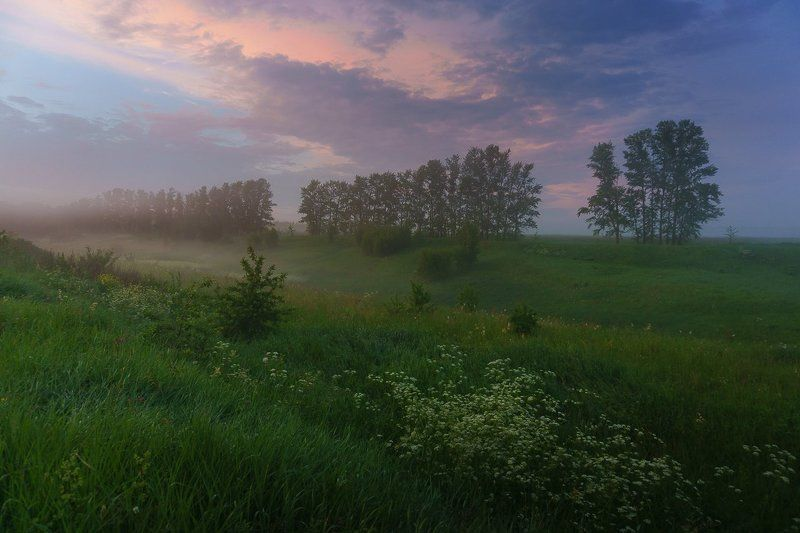пейзаж, природа, туман, лето, фото Туманный вечерphoto preview