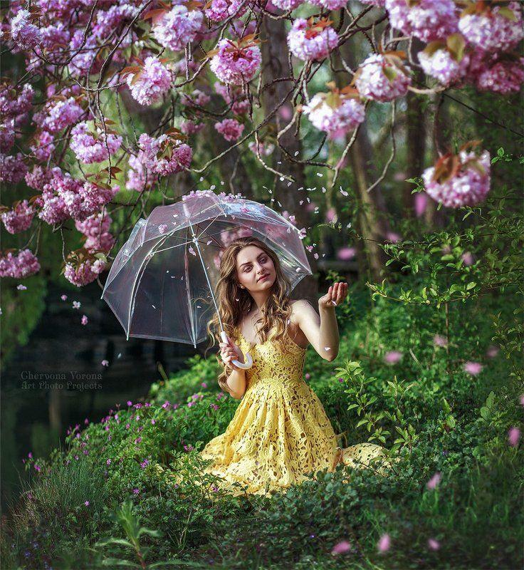 сакура, девушка, река, весна, цветы, полянка, лепески Весенний дождьphoto preview
