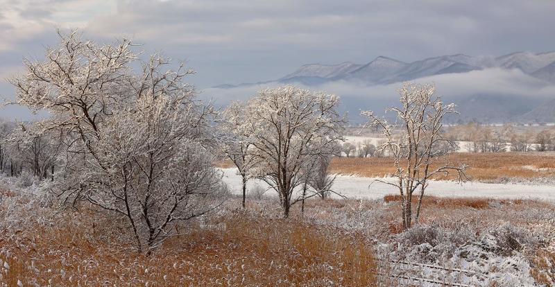 приморье, первый снег, зима, горы, утро первый снегphoto preview