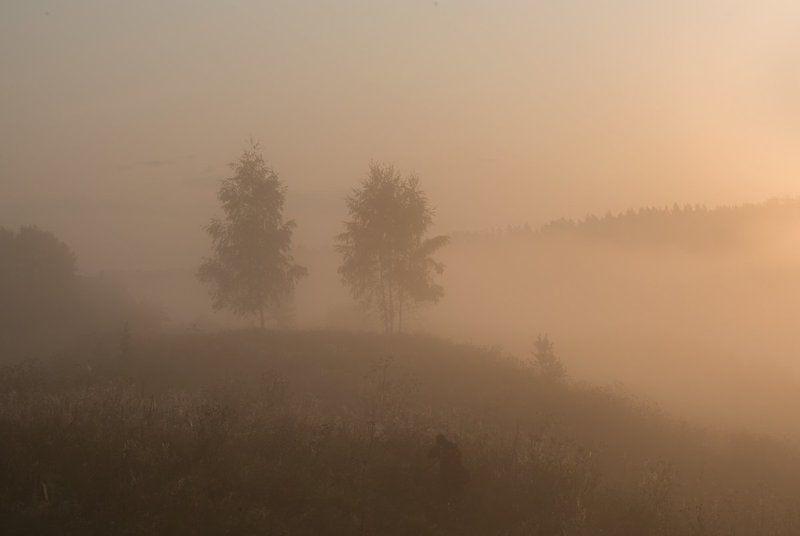 россия, природа, река, угра, смоленская область, август, 2017, рассвет, туман, nikon, лодка, пейзаж, Укутаны туманомphoto preview