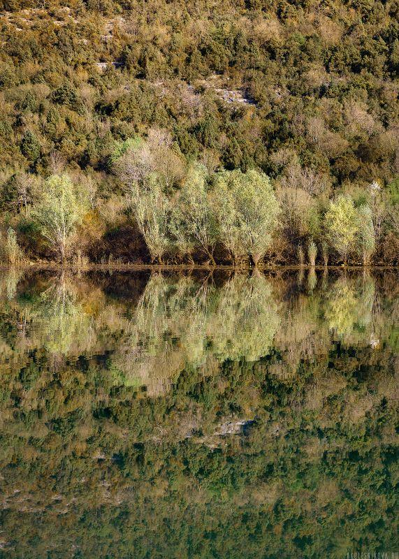 природа, ландшафт, национальный парк, пейзаж, черногория, юнеско, путешествие, озеро. Лесная глубинаphoto preview