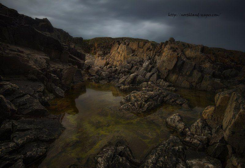 Побережье Баренцево моря, Кольский полуостров,  После дождяphoto preview