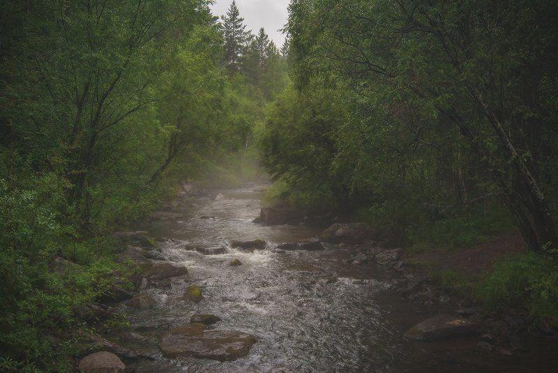 Олха после дождяphoto preview