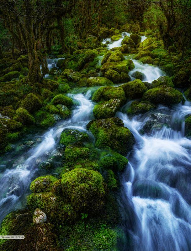 Грузия, Самегрело, Водопад, Весна, Мох, Река, Длинная выдержка, Панорама Шурубумуphoto preview