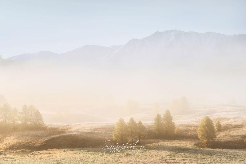 туман, озеро, алтай, фототур, ештыкколь, осень, чуйский, красиво, рассвет, желтый Туман на озереphoto preview