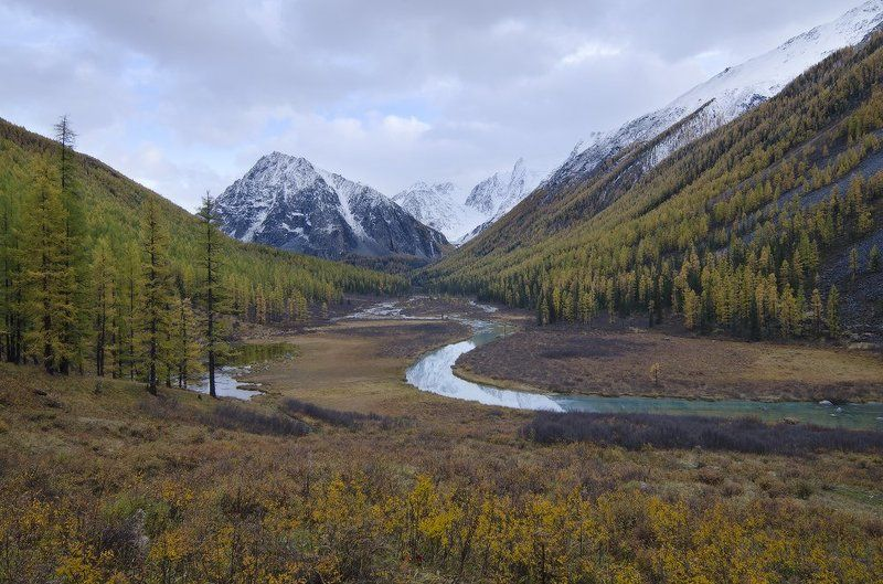 Алтай, Шавла алтайская открыткаphoto preview