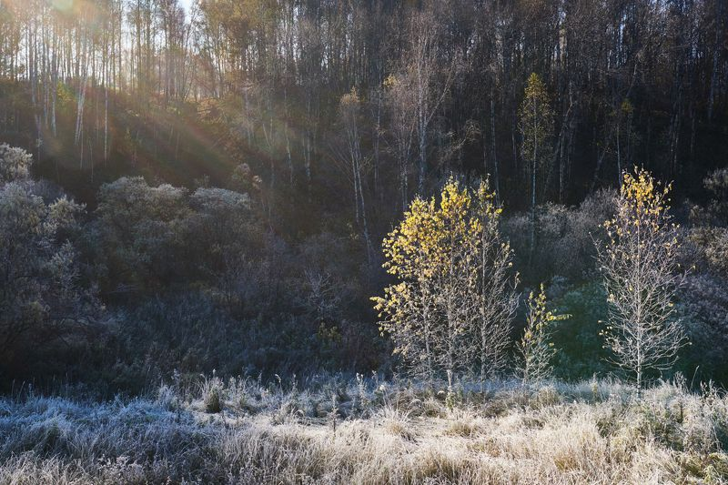 Еще теплый свет -2photo preview